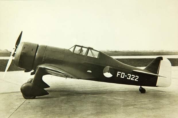 Fokker D.XXI (1).jpg