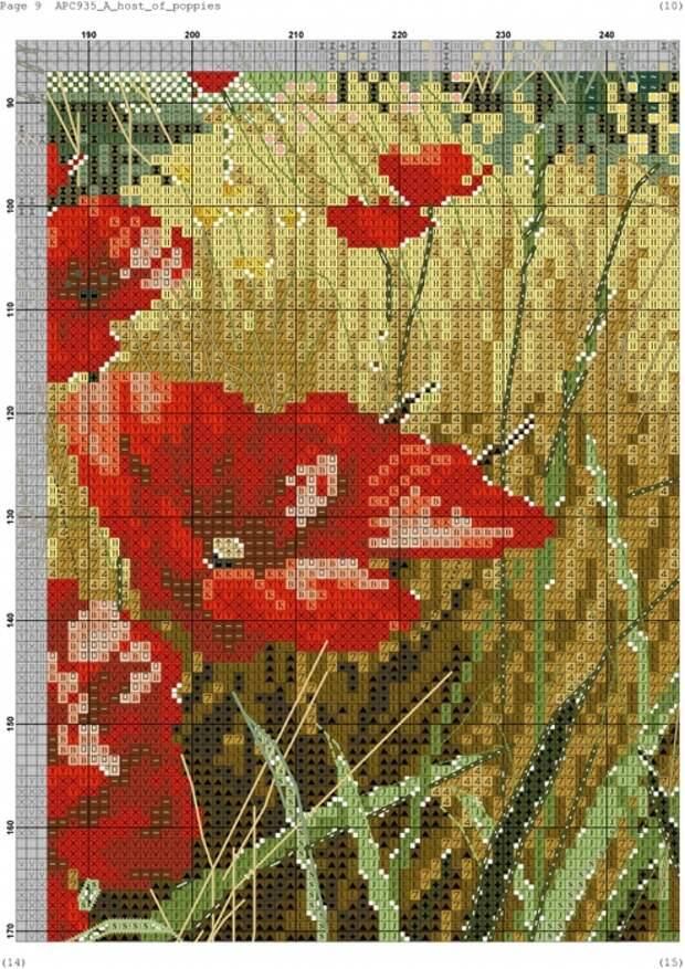 4946750_Anchor_AP1C935_A_Host_of_Poppies009 (494x700, 373Kb)