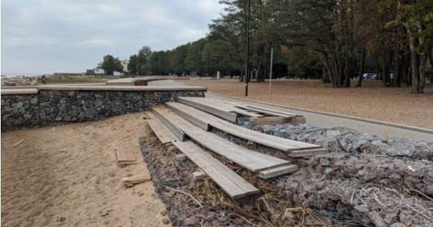 В Приморском районе вырубили 70 га вековых деревьев, а парк так и не построили