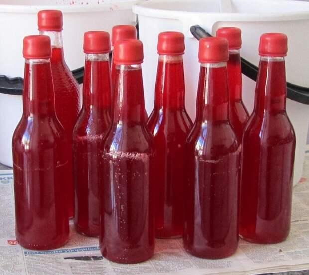 вино из малины своими руками