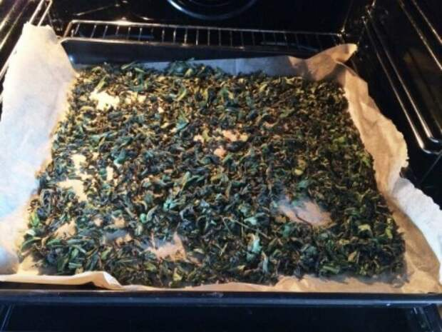 После ферментации под влажным полотенцем листья выкладываются на противень с пергаментом / Фото: namenu.ru