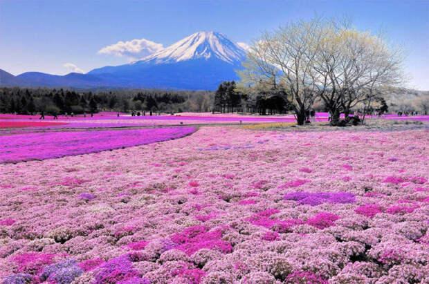 Фотографии гор Красивые горы со всего мира