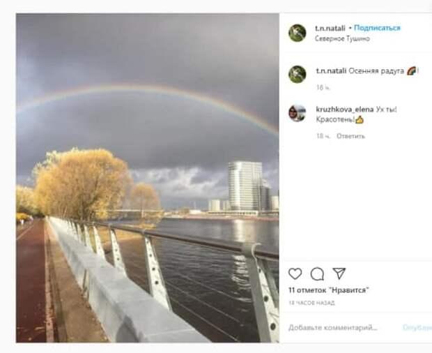 Фото: дня: осенняя радуга после дождя