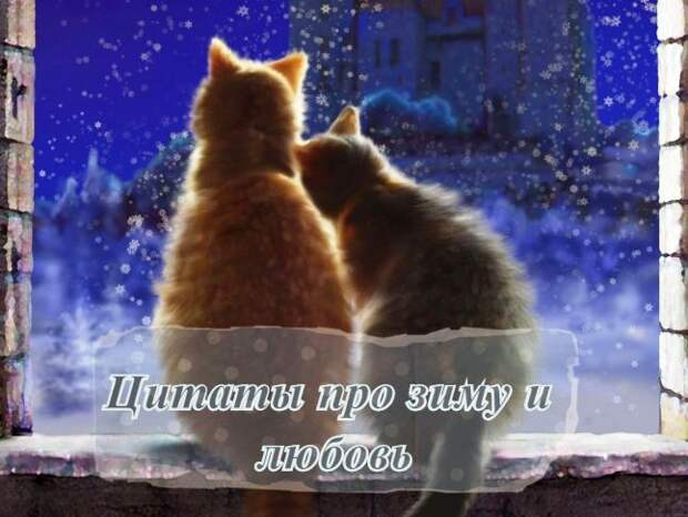 Цитаты про зиму и любовь