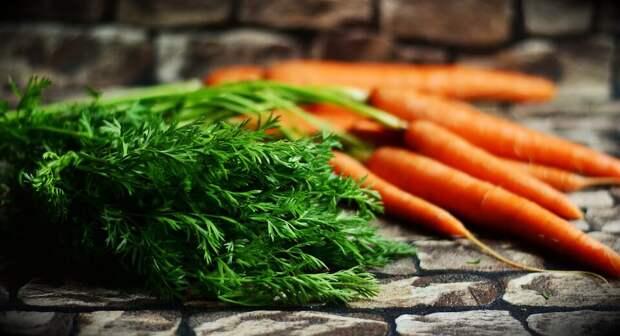 10 советов по выбору свежих овощей и зелени