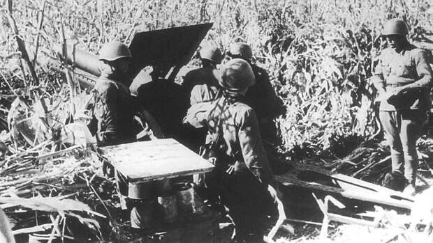 Материалы МО о героизме советских солдат напомнили россиянам песню об освобождении Европы