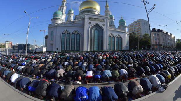 У самих работы нет: Русские в отчаянии, а чиновники везут кишлак-арбайтеров вагонами