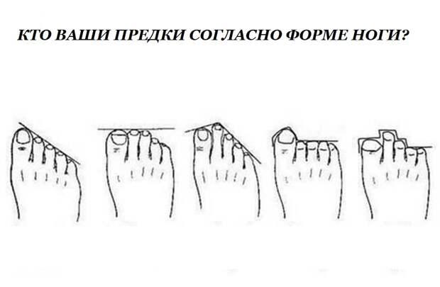 Откуда я родом: форма ног расскажет о далеких предках и качествах, которыми вы обладаете