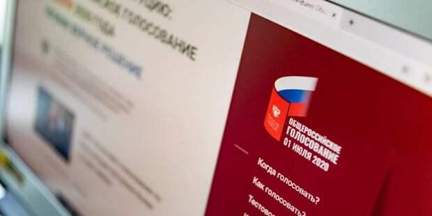 Эксперт отметил надежность системы дистанционного электронного голосования / Фото: mos.ru