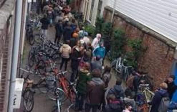 Кому гречка, а кому марихуана - голландцы штурмуют магазины с каннабисом