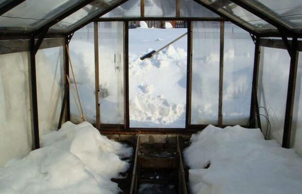 Вот зачем некоторые дачники закидывают снег в теплицу