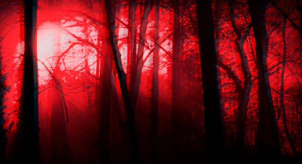 Жуткая история от чистокровного индейца: Зло в лесу