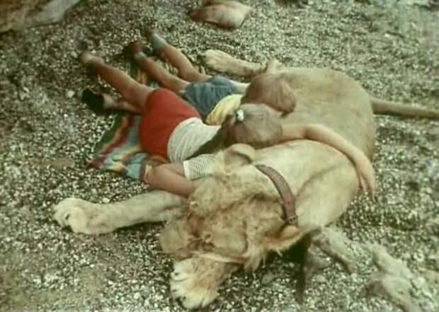 Кадр из фильма *У меня есть лев*, 1975 | Фото: kino-teatr.ru