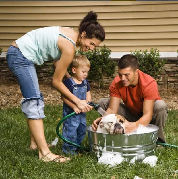Трудовое воспитание ребенка в семье