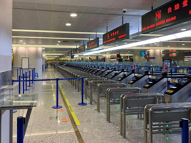 Детский омбудсмен предложила организовать специальный рейс, чтобы вывезти из Петербурга в Китай более ста суррогатных детей