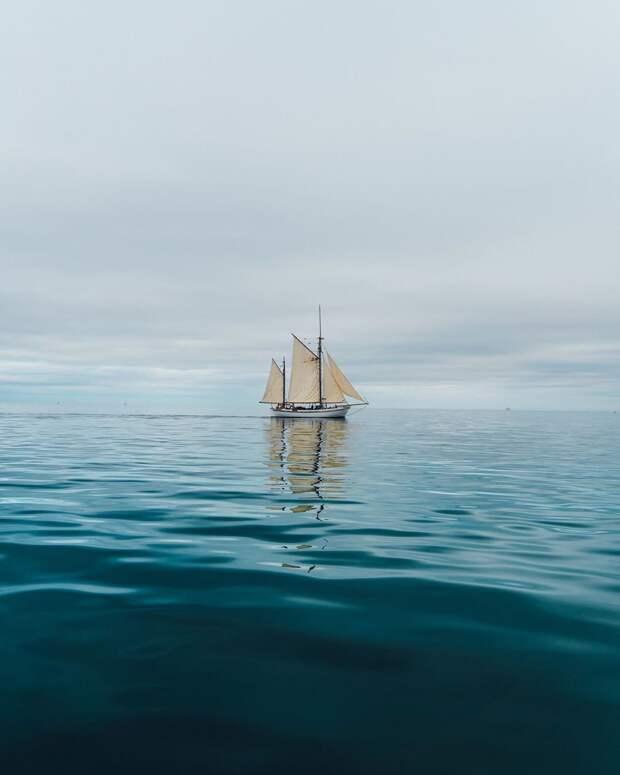 Дух свободы в путешествиях Тома Калера