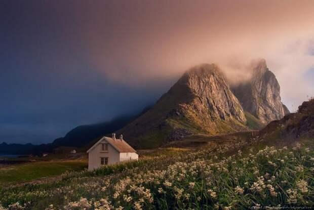 46 причин совершить путешествие в Норвегию