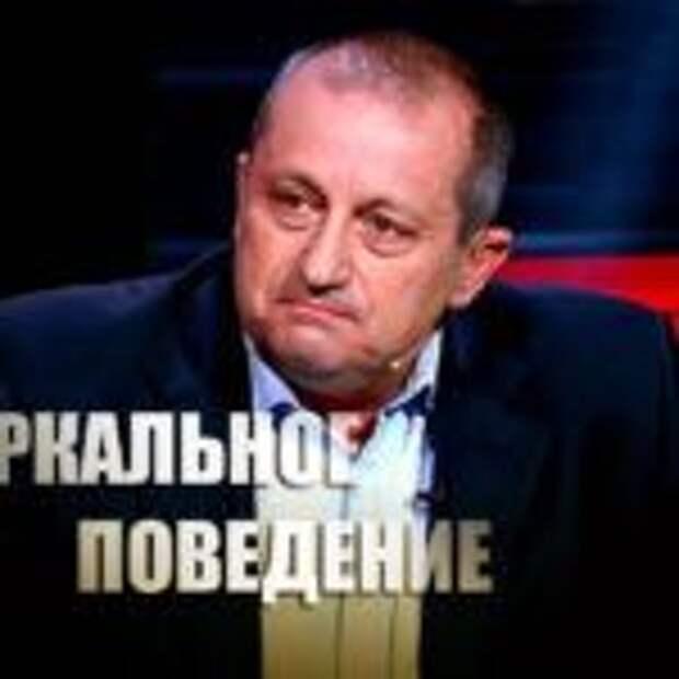 «Шемякин суд»: Яков Кедми пояснил, как может ответить Россия на решение Гааги по делу «ЮКОСа»
