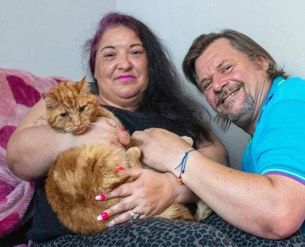 Как рыжий кот Гарфильд вернулся домой кстарым хозяевам, которые хотели отнего избавиться