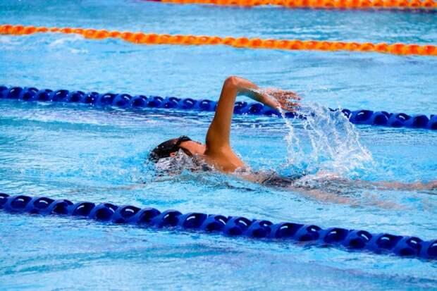В Молжаниновском началось формирование сборной команды по плаванию