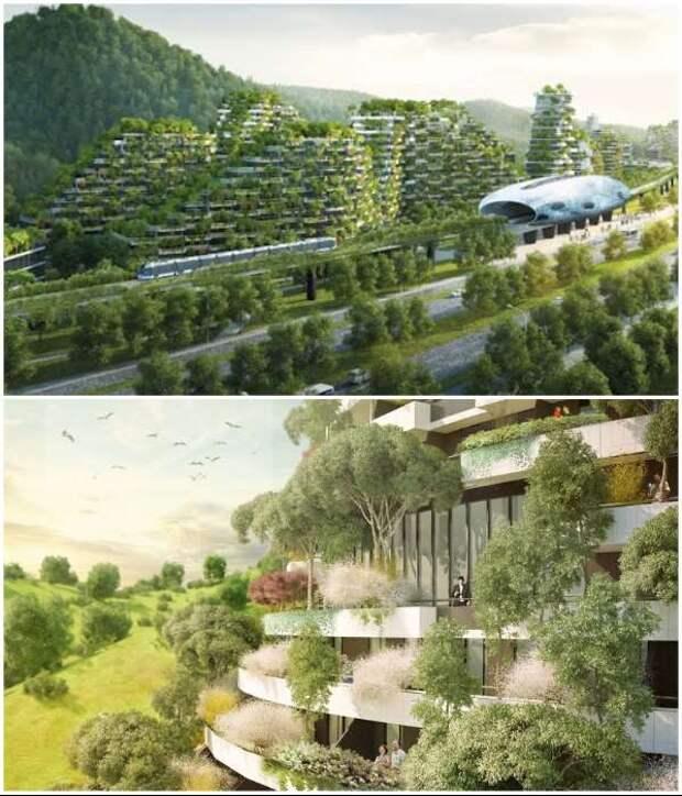 ТОП-7 технологий по вертикальному озеленению зданий (21 фото + 7 видео)