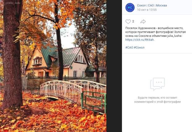 Фото дня: золотая осень в Поселке Художников