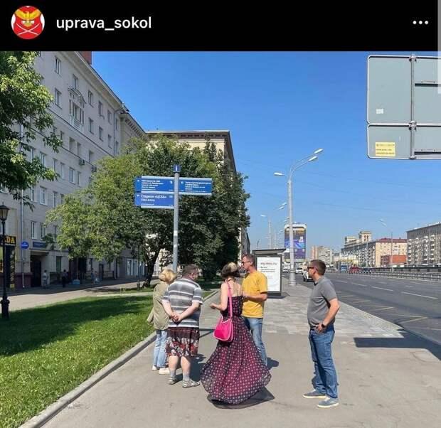 Свисающие на дорожные знаки ветки деревьев в Чапаевском переулке спилят — итоги обхода