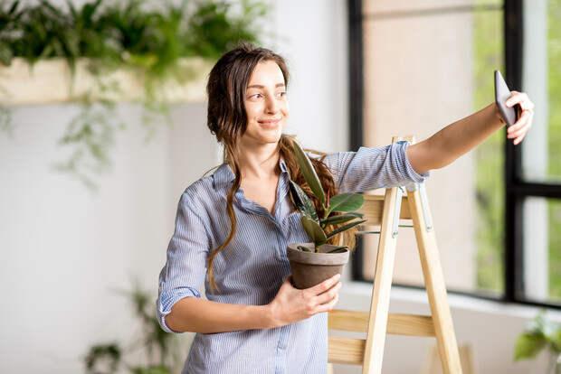 Почему погибают комнатные растения, купленные в магазине