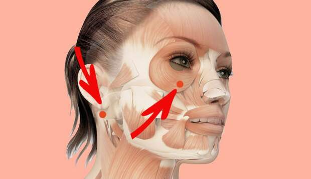 2-недельный массаж CHIHIRO: 4 точки красоты, которые отложат старение лица