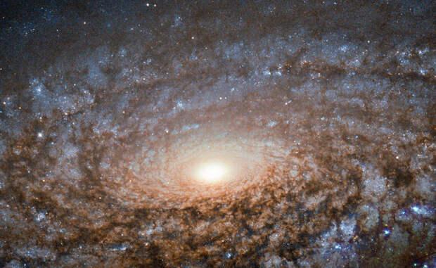 Самые безумные снимки космического телескопа Хаббл
