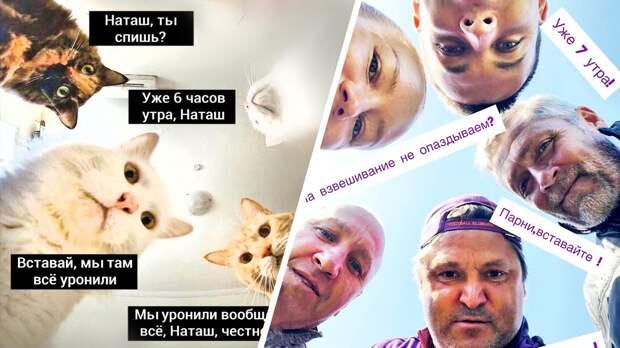 Евсеев стал героем популярного мема про Наташу икотов: фото