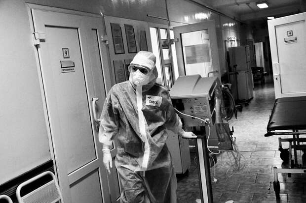 Коронавирус на Кубани: 20 человек умерли и 195 заразились