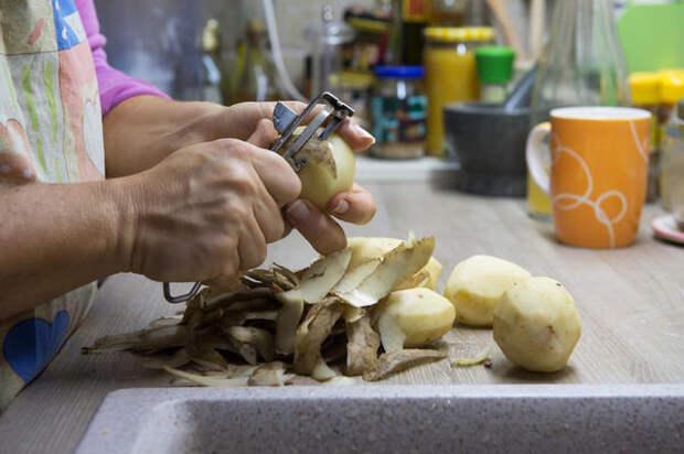 Высушенные картофельные очистки — полезное удобрение