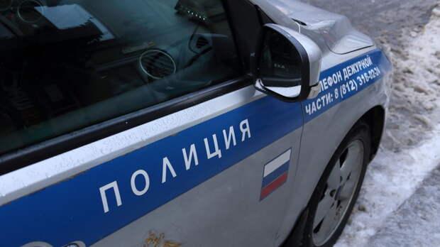 Историк-убийца отправился в СИЗО. Защита ждет скорого ареста: Последние подробности страшного убийства в Петербурге