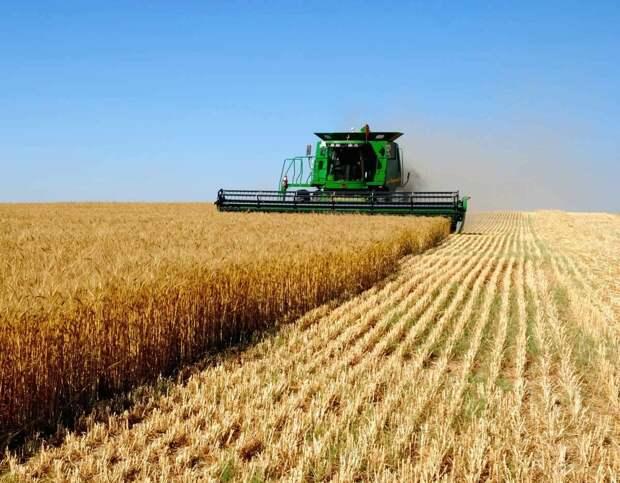 Что привело к развалу колхозов?