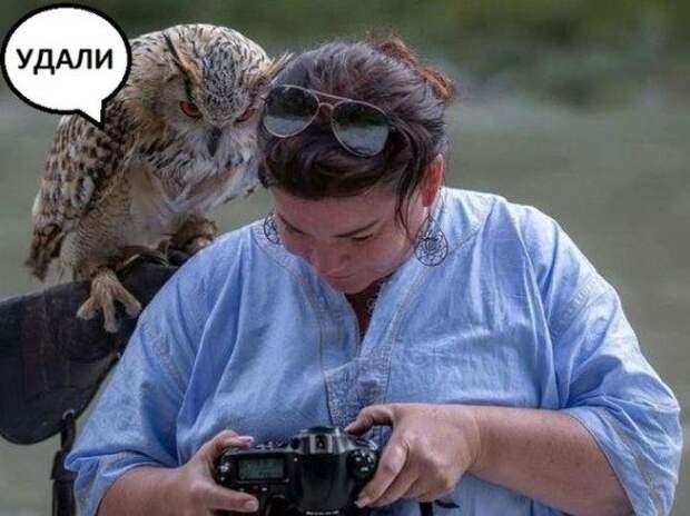 Новые смешные картинки дня!