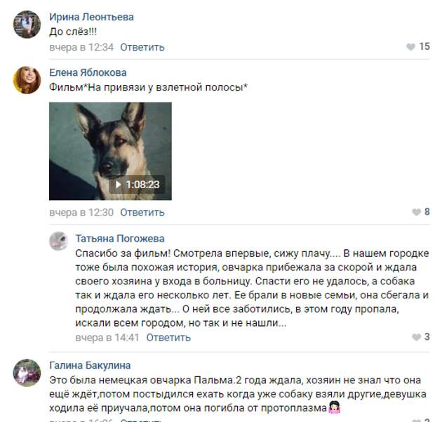 История о судьбе собаки Найды...