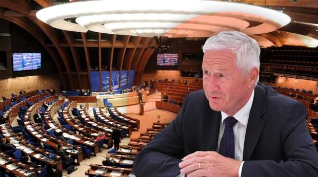 Немецкие депутаты в ПАСЕ «послали» украинских