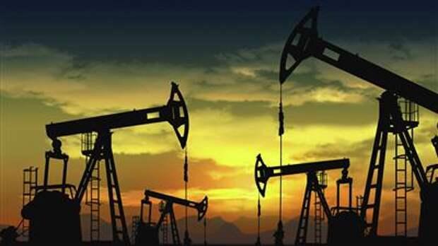 Пик добычи нефти в России ожидается в период 2027-2029 годов - генсхема отрасли