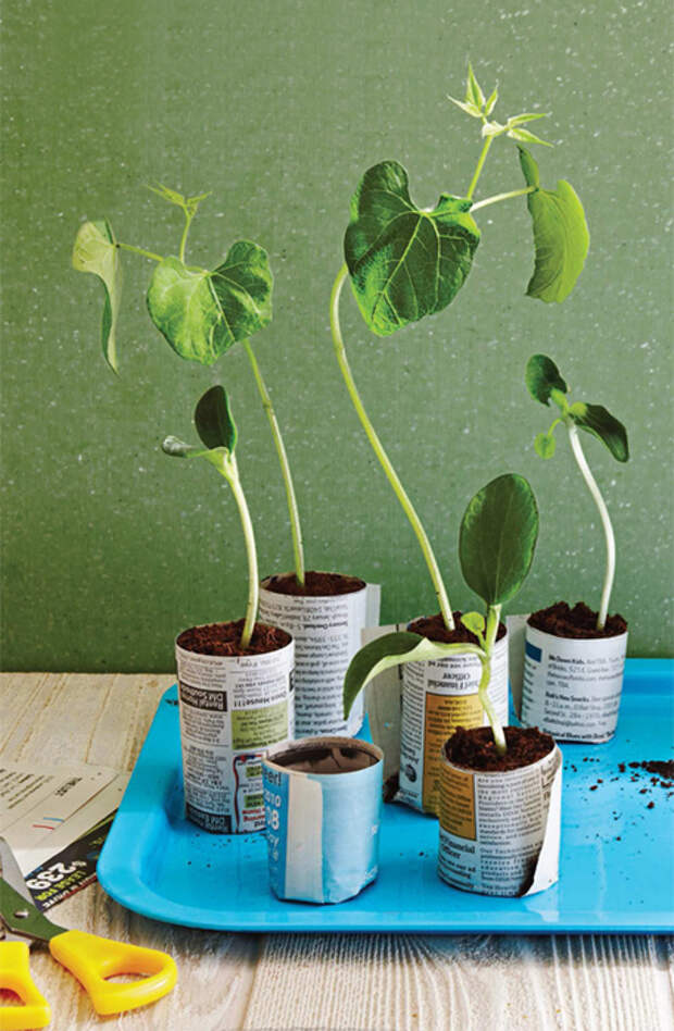 herb-garden-inspirations10 (457x700, 397Kb)