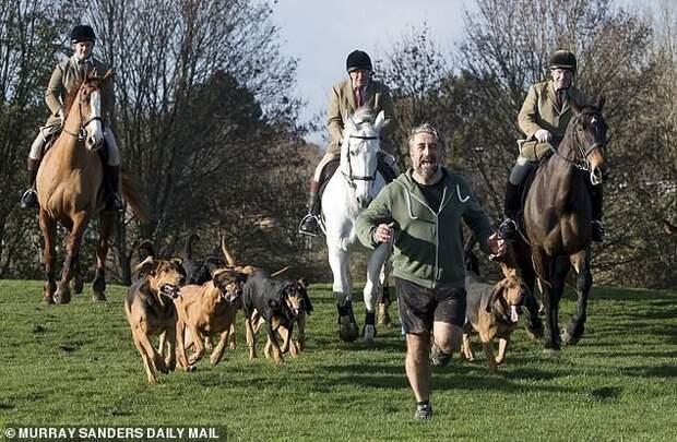 Запрещенную вБритании охоту налис заменили охотой на… человека