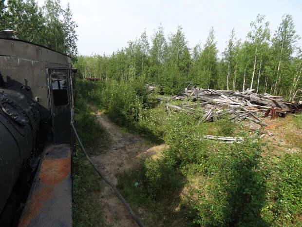 Паровозы в тайге, где на сотни километров нет ЖД. Рассказываю, как они туда попали.