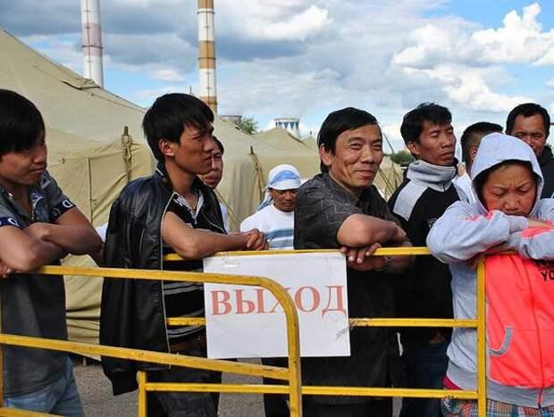 Сколько мигрантов осталось в России?