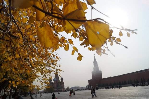 Специалисты центра «Фобос» пообещали еще один всплеск тепла в Москве