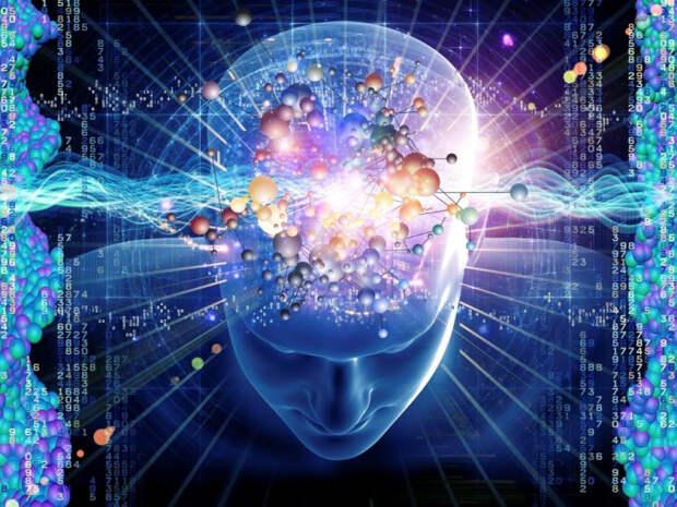 Наш мозг - голографическая машины, которая существует в голографической вселенной?