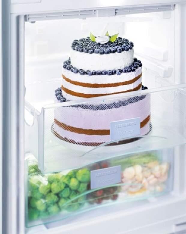 Торт можно хранить в в морозилке сутки. / Фото: liebherr.com
