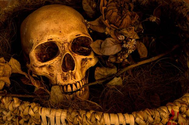 Под Нижним Новгородом нашли останки 10 человек с простреленными головами