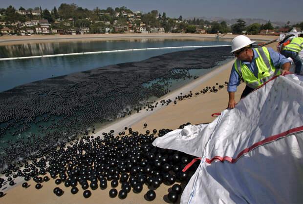 Работники Департамента по управлению водными и энергетическими ресурсами высыпают пластиковые шары в водохранилище Айвенго в Лос-Анджелесе в понедельник, 9 июня 2008. За один раз в озеро высыпали около 400 тысяч черных пластиковых шаров 20 см в диаметре. Всего же планируется высыпать около 3 млн. шаров с тем, чтобы сформировать плавающее покрытие площадью свыше 7 акров для защиты воды от солнечных лучей. При влиянии солнечного света на воду озера, содержащиеся там бромид и хлора смешиваются, и в результате образуется канцероген бромат. (Irfan Khan/AP)