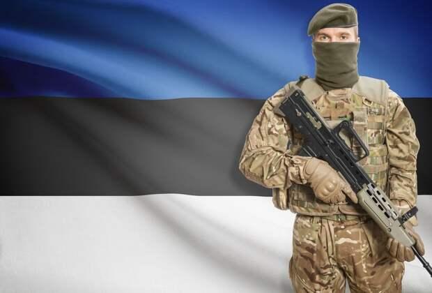 У «сильнейшей в Европе» украинской армии появился конкурент