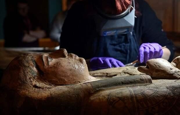 Египетские мумии продолжают удивлять. /Фото: focus.ua